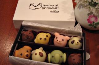 Animal Chocolat