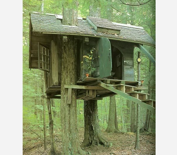 Creepy Tree House