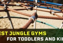 Best Jungle Gyms for Toddlers and Kids