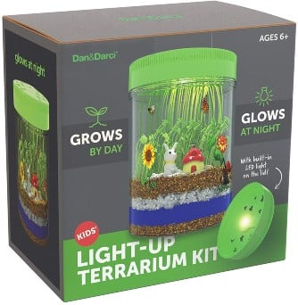 Light-up Terrarium toy Kit