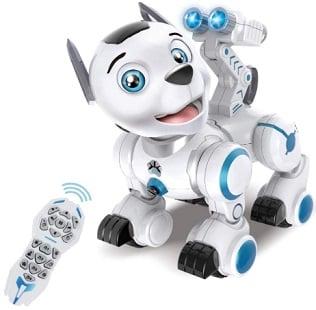 Remote Control Robotic Dog