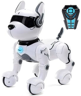 Top Race Voice Controlled & Remote Control Robot Dog